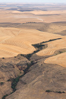 Palouse from the Air